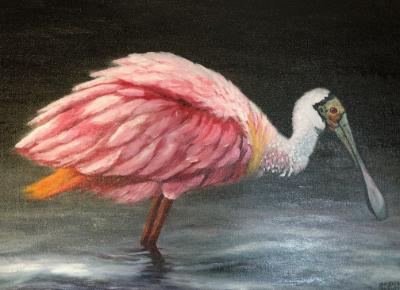 Brenda Francis - Colors of Spoonbill
