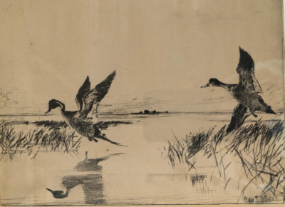 Frank Benson 'Pair of Pintails'