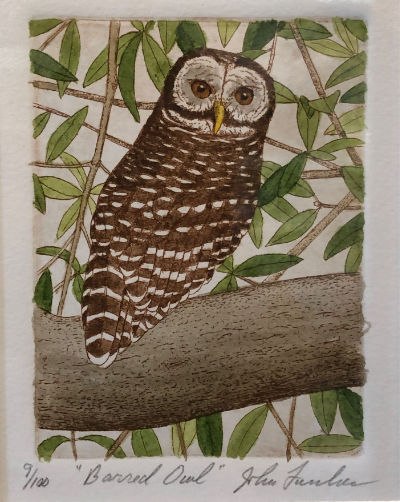"John Furches ""Barred Owl"" 9x7 framed aquatint etching $200"