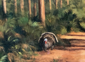 Painting of a turkey in the woods