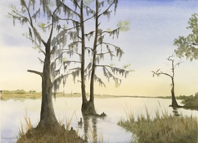 "Marty Holland ""Sunrise Cypress"" 16x20 watercolor $250"