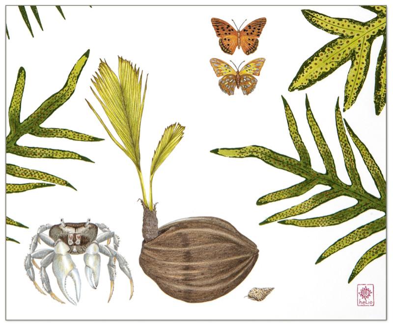 Dawn Wilkins Coastal Companions (detail)