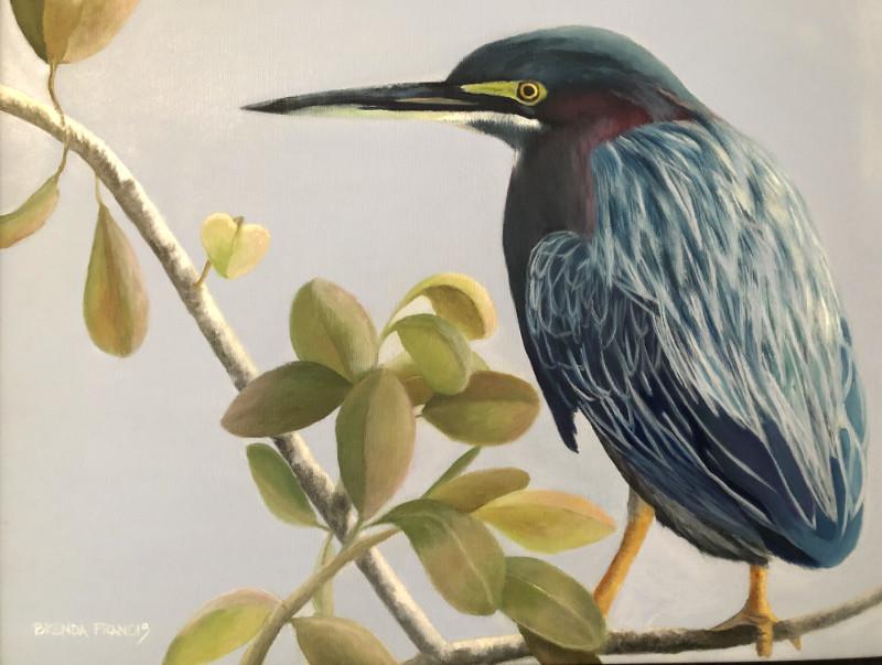 Brenda Francis Green Heron 16x20 oil on canvas $500