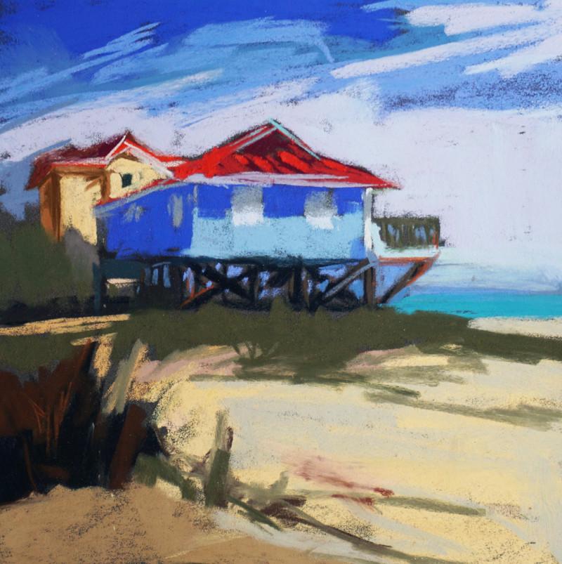 Barbara Noonan Great Perch 9x9 (16x16 framed) pastel $425
