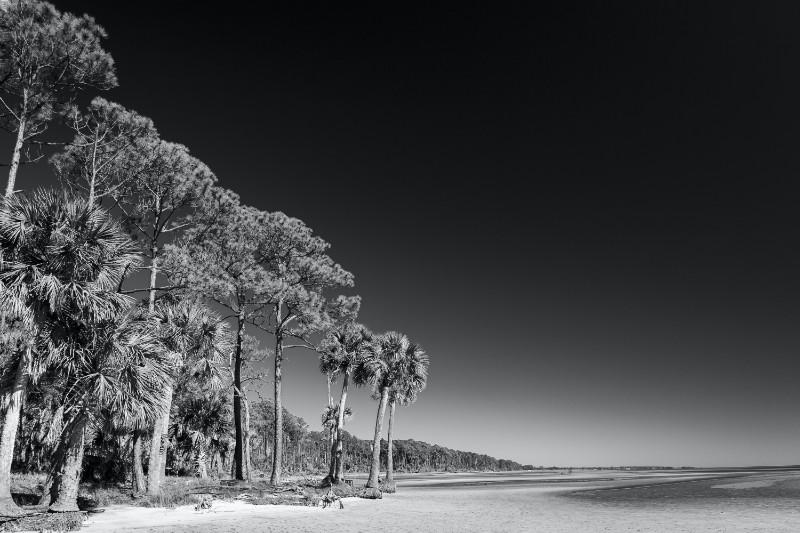 Larry McIntosh 8 Mile Shoreline 21x28 framed $435