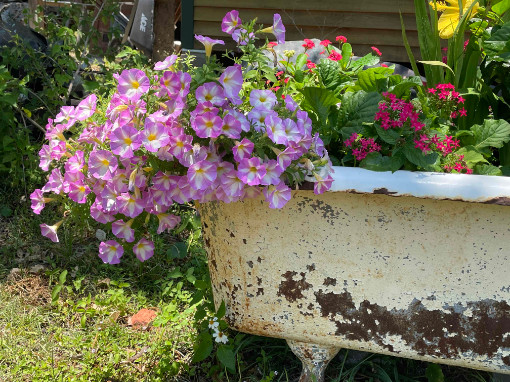 Live Oak Gallery Apalachicola Florida Tub of Flowers